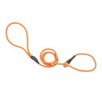 Firedog Retrieverline - bright orange 130