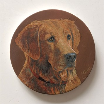 Glasbrikker - Coasters Golden retriever 4 stk.